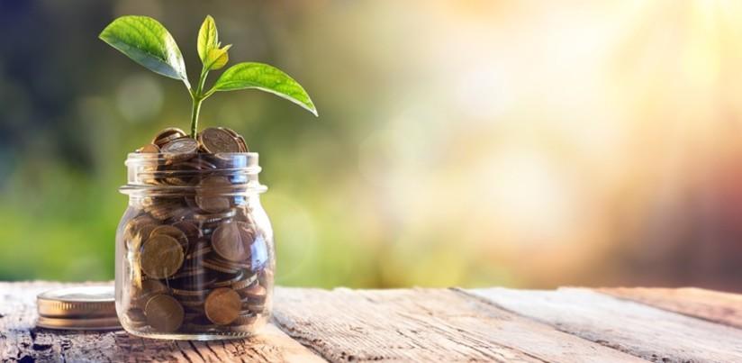 grow_your_savings